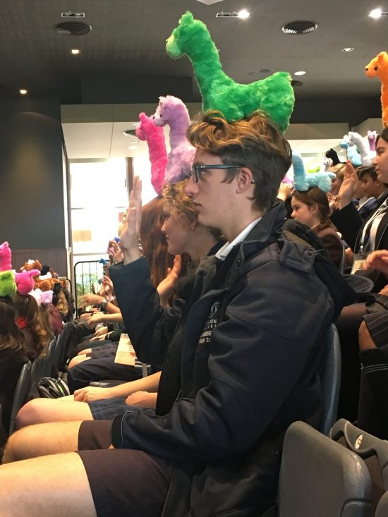 Group of students as spectators each with a soft toy on their head